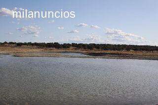 VENTA FINCA TOLEDO - foto 5
