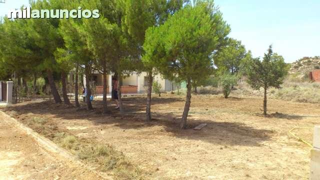 CASPE URBANIZACION PLAYAS DE CHACON - foto 4