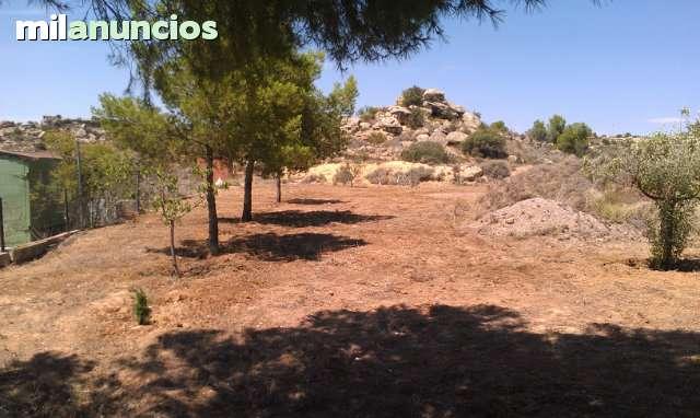 CASPE URBANIZACION PLAYAS DE CHACON - foto 3