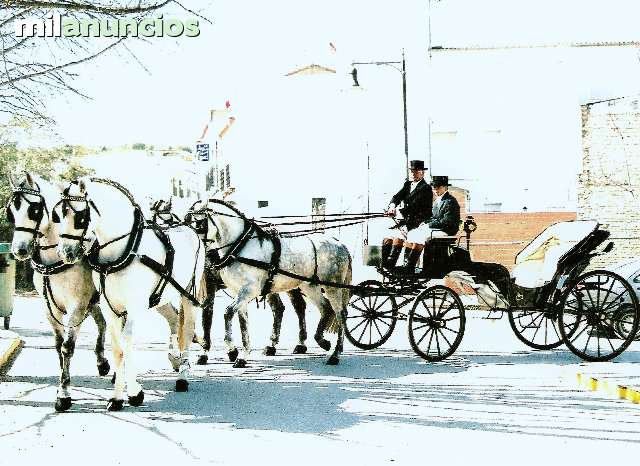 COCHES PARA BODAS, BAUTIZOS, 608420925 - foto 2