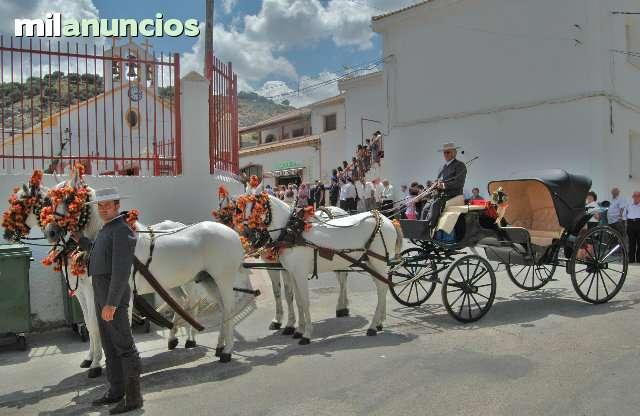 COCHES PARA BODAS, BAUTIZOS, 608420925 - foto 6