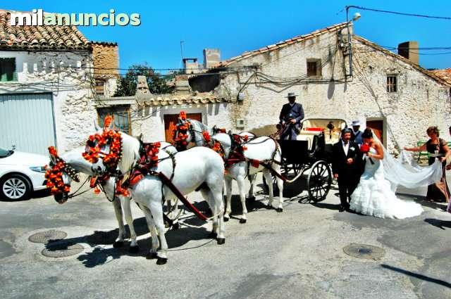 COCHES DE CABALLOS BODAS Y COMUNIONES - foto 5
