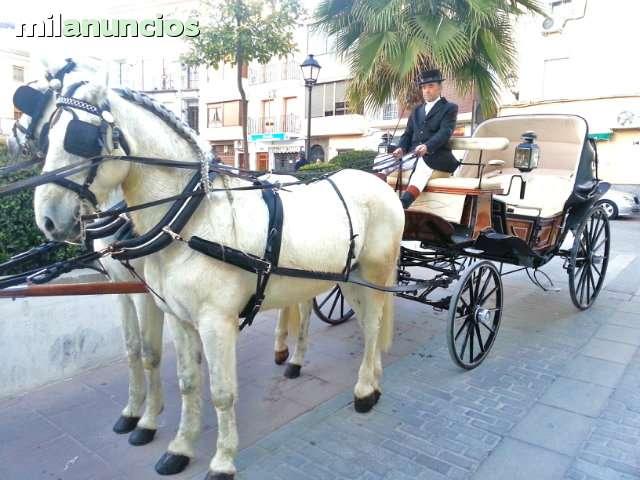 COCHES DE CABALLOS BODAS Y COMUNIONES - foto 6