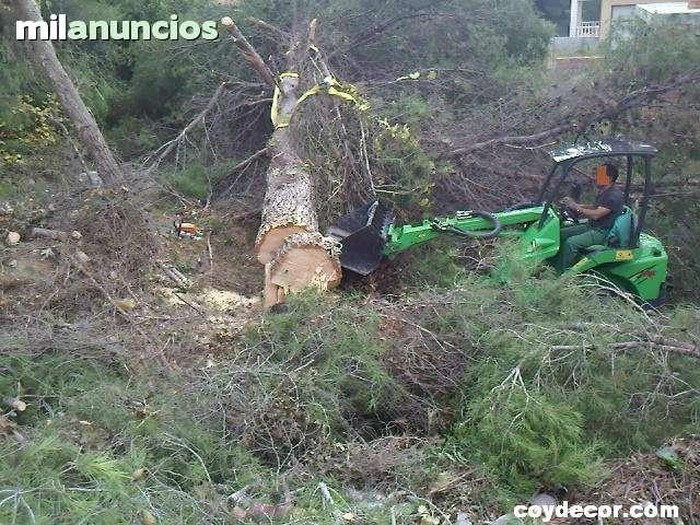 LIMPIEZA PARCELAS TARRAGONA PROV.  - 659 900 900 - foto 1