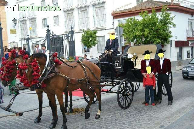 ALQUILER DE COCHE DE CABALLOS CARRETONES - foto 4