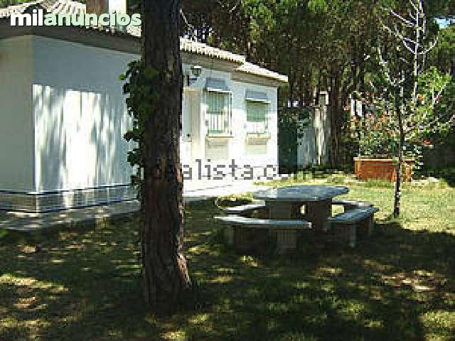 PINAR DE LOS GUISOS - foto 2