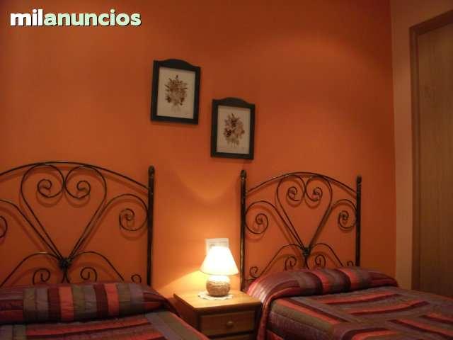 SETAS Y HONGOS FUENTE DEL PINO  PINARES.  - foto 6