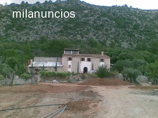 LIMPIEZA DE FINCAS / SOLARES /DESBROCES - foto 2