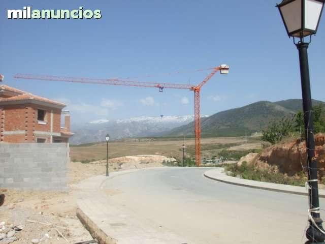 ALQUILER DE GRÚAS TORRE Y AUTOMONTANTES - foto 4