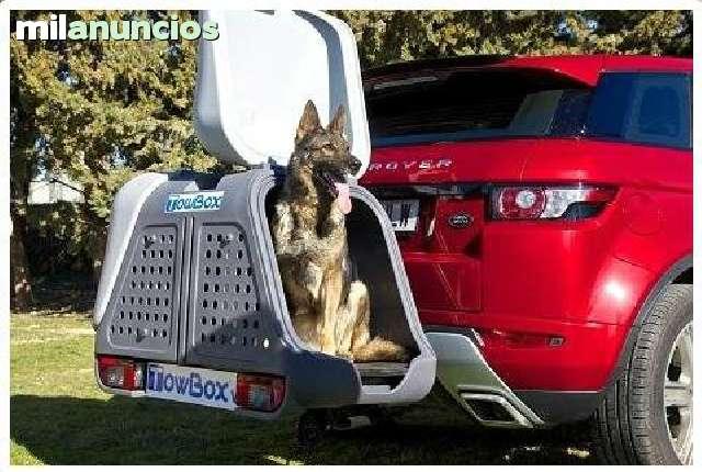 PORTAPERROS TOW BOX V2 - foto 7