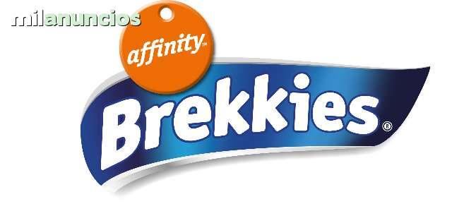 OFERTA BREKKIES