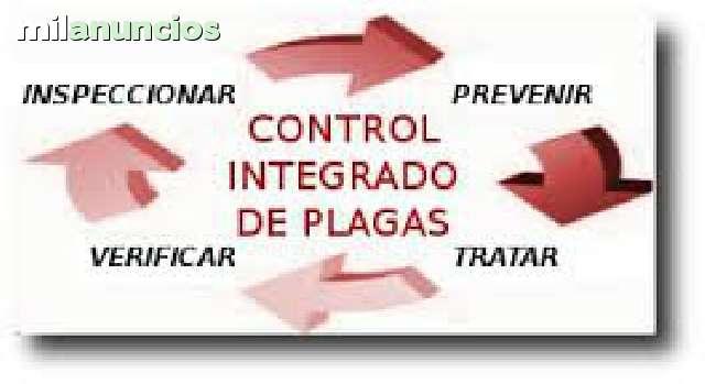 FUMIGACIONES CONTROL DE PLAGAS EMPRESA - foto 2
