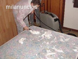 LIMPIEZA Y DESINFECCION PARA TODO - foto 2