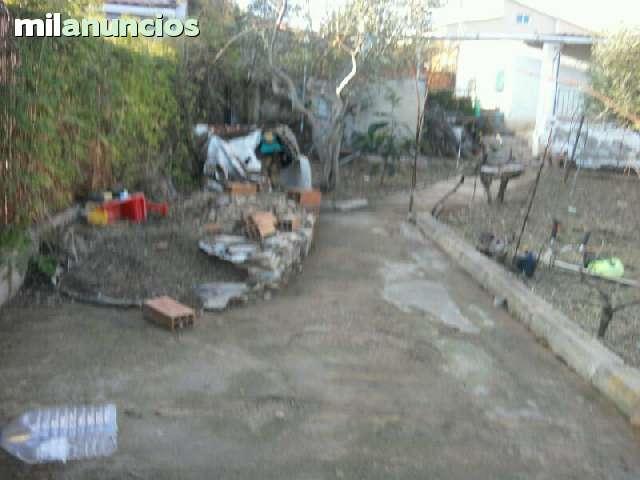 LIMPIAMOS PARCELAS ECONOMICAS - foto 4