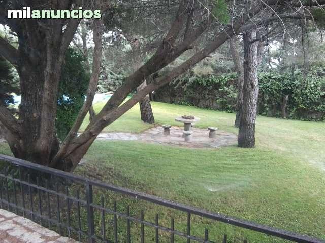 JARDINERO ECONOMICO, RIEGOS AUTOMATICOS - foto 1