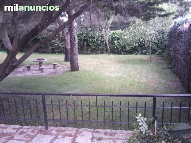 MADRID LUZ Y JARDIN 629116808 - foto 3