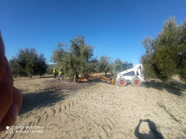 SERVICIOS AGRICOLAS - foto 2