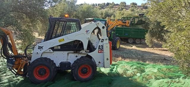 SERVICIOS AGRICOLAS - foto 9