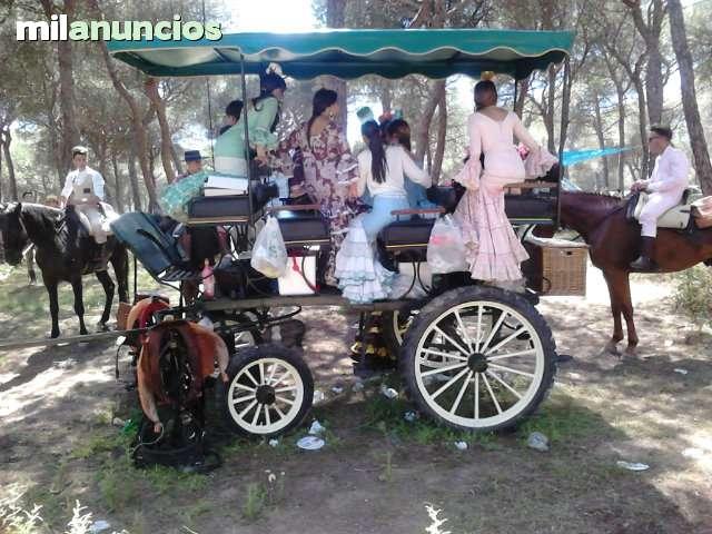 SE ALQUILA COCHE DE CABALLOS