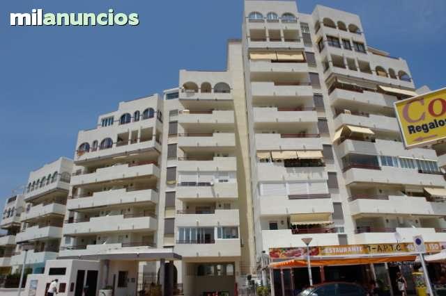 MARINADOR APART. FRONTAL PRIMERA LINEA PL - foto 9