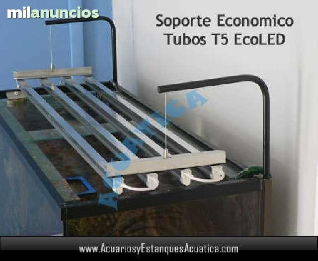 Acuario Ecoled Pantalla T5 Ciclidos Led eHI92EbWDY
