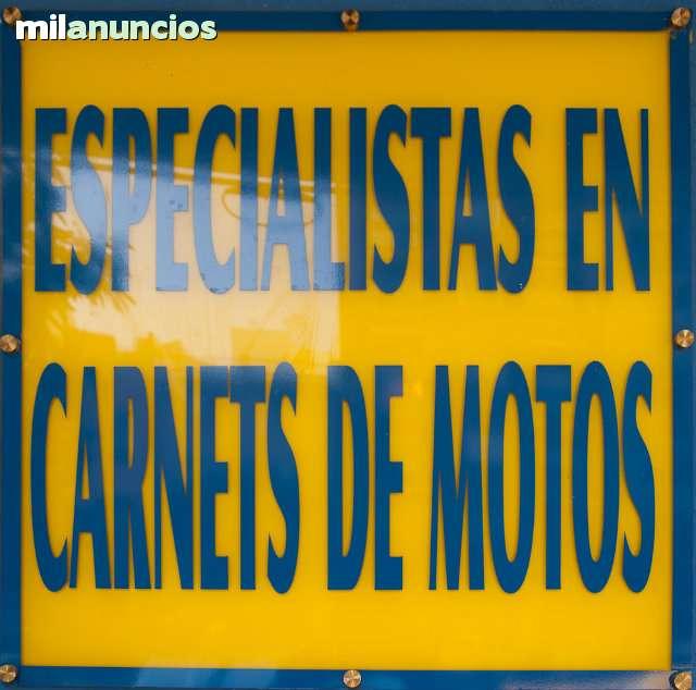 CAMPUS VIAL--FLOTA VEHICULOS NUEVOS - foto 5