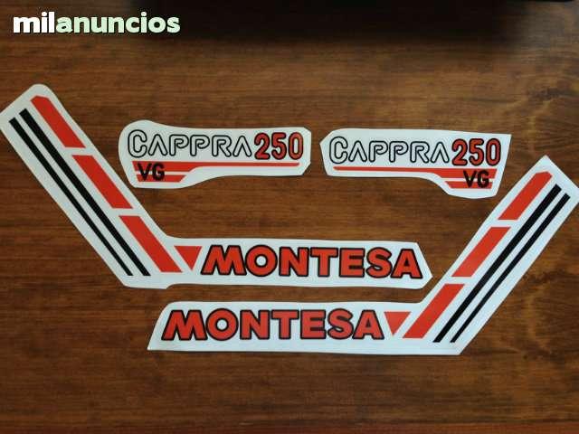 ADHESIVOS MONTESA - CAPPRA 250 VG