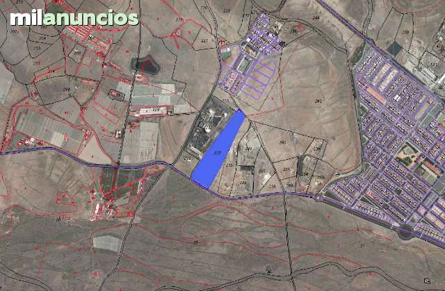CRUCE DE ARINAGA. CHOZUELO. AGUIMES - foto 4