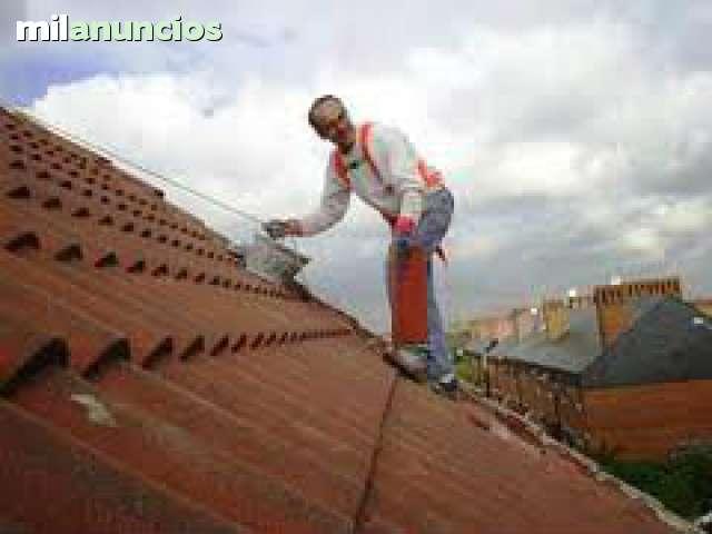 TEJADOS EN MADRID - foto 1