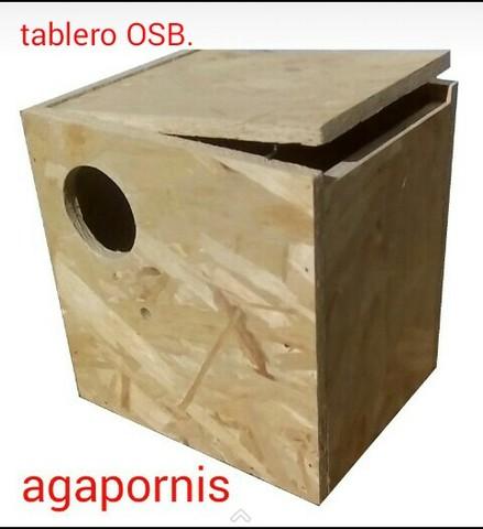 NIDOS NINFA AGAPORNIS PERIQUITO DIAMANTE
