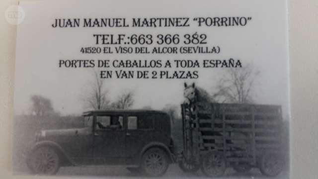 TRANSPORTES DE CABALLOS (ESPAÑA Y PORTUG