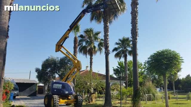 ALQUILER PLATAFORMAS ELEVADORAS - foto 5