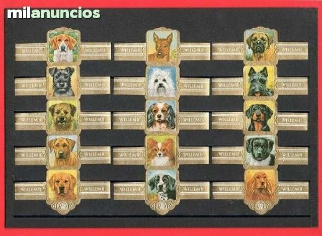 Series De Vitolas. Perros.