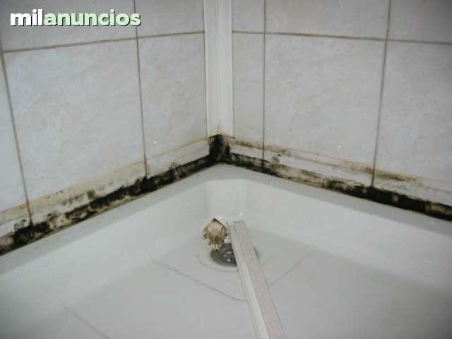 ELIMINAMOS MOHO Y CONDENSACIONES.  - foto 2