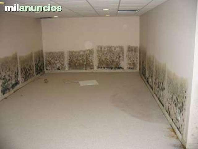ELIMINAMOS MOHO Y CONDENSACIONES.  - foto 5