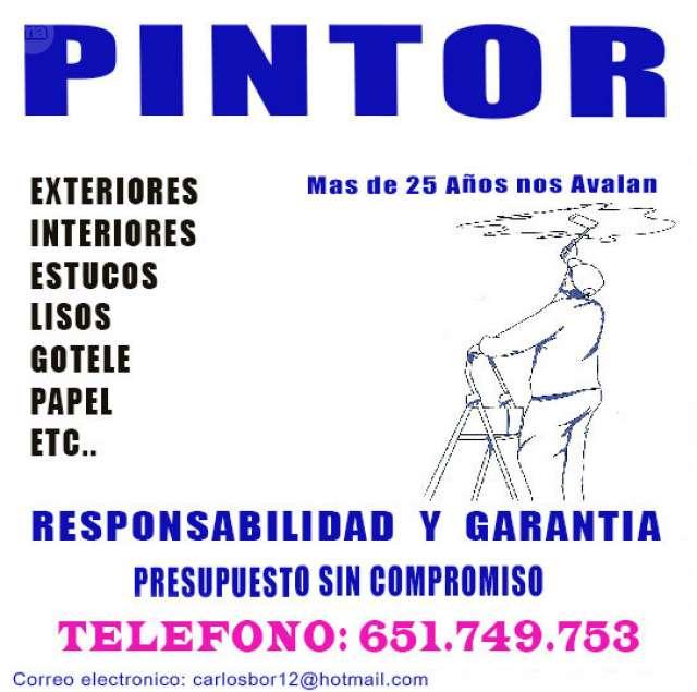 PINTOR ECONOMICO GARANTIA 100%100