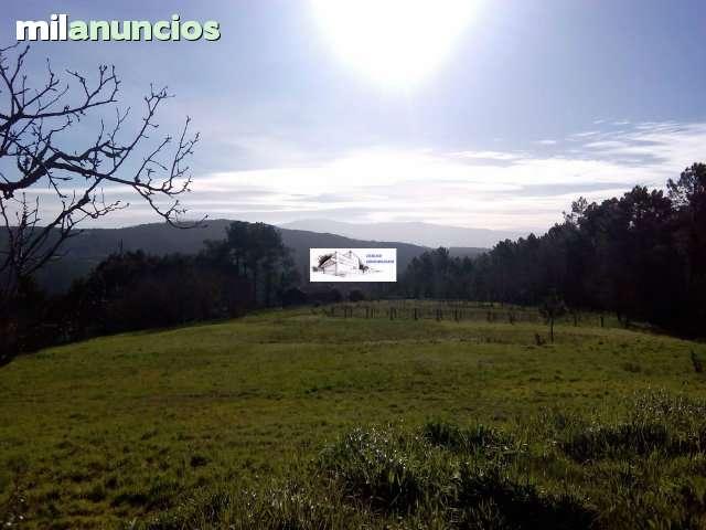 SE VENDEN CASAS CON TERRENO DE 23. 000 M2 - foto 6
