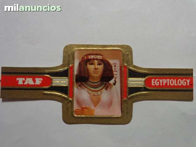 TAF - EGIPTOLOGIA