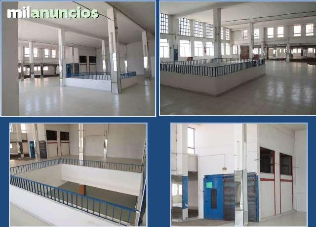 RONDA DE ALMERIA - CTRA.  DE RONDA - foto 6