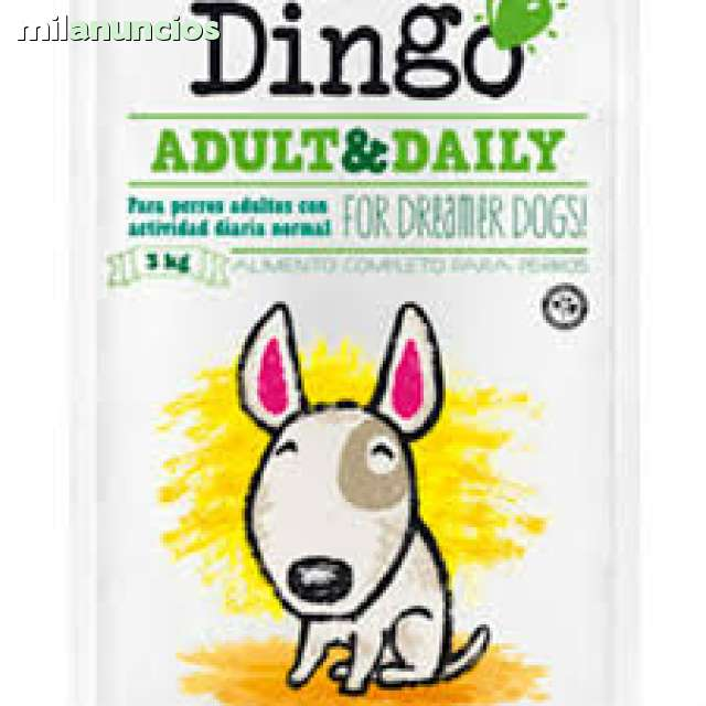 PIENSO DINGO ADULT DAILY