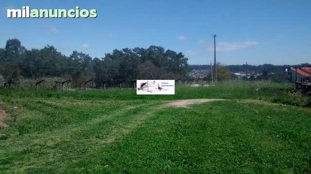 CASERIO DE PIEDRA 200M2 CON FINCA 2600M2 - foto 6