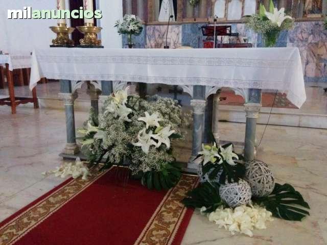 MIL ANUNCIOS.COM - Alquiler de alfombra roja para tu boda