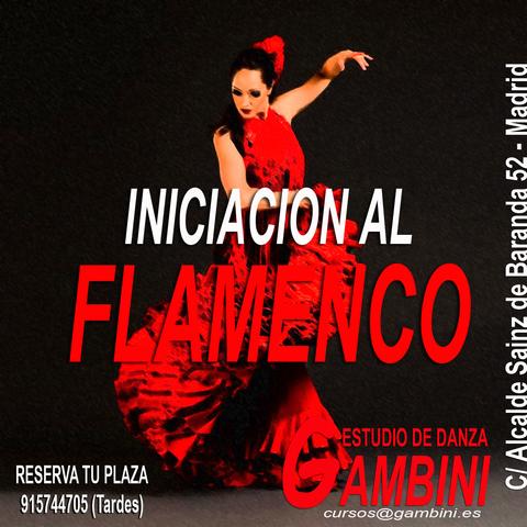 FLAMENCO - INICIACION - foto 1