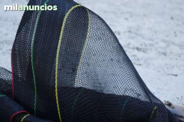 MANTOS RECOLECCIÓN FRUTOS ACEITUNA - foto 2
