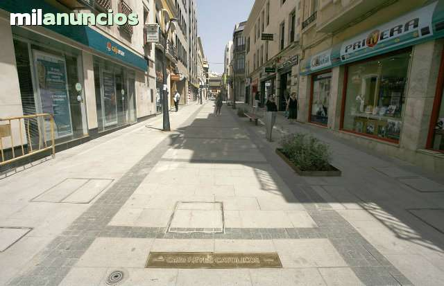 GRAN LOCAL CENTRO - CALLE REYES CATOLICOS - foto 1