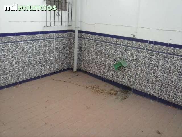 FINCAUTRERA.  CASA PLANTA BAJA - foto 4