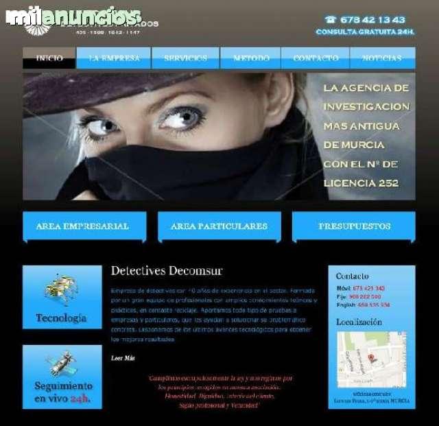 DETECTIVES PRIVADOS DECOMSUR (INFIELES) - foto 1