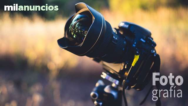 FOTO + VÍDEO PROFESIONAL - foto 2