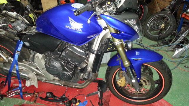 Honda CB600F Hornet | in Falkirk | Gumtree
