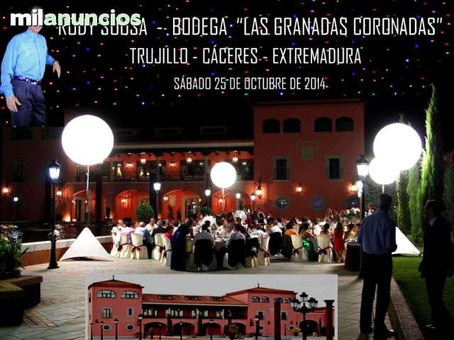 ANIMACIÓN DE FIESTA CANTANTE TODA ESPAÑA - foto 8